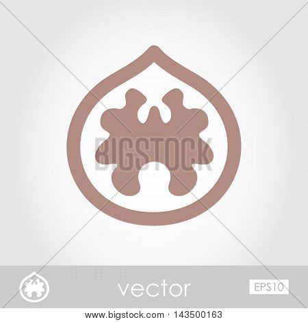 Walnut outline icon. Fruit Nut. Vector illustration eps 10
