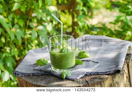 Fresh Mousse Cucumber Celery Basil