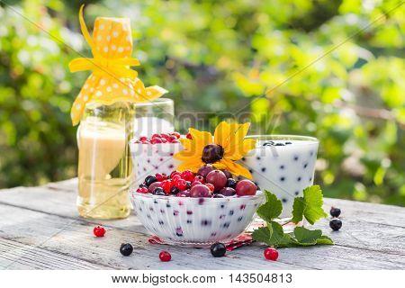 Spring Garden Cocktails Fruit Currants