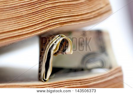 picture of a Close up of one dollar between old book pages