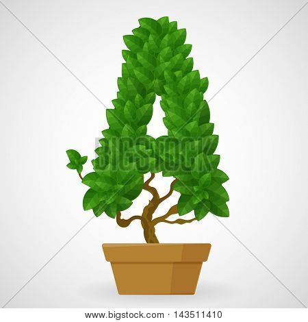 Letter A. Tree in the pot. Vector alphabet letters made from green leaves.