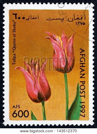 AFGHANISTAN - CIRCA 1997: a stamp printed in Afghanistan shows Tulip Queen of Sheba Flower circa 1997