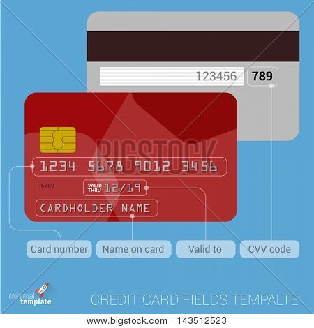 Vector flat design credit card fields description template.