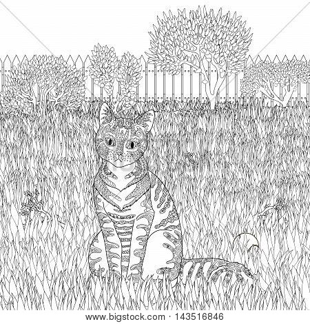 High detail patterned cat on detailed background in zentangle style. Adult coloring page with pet for antistress art therapy. Zendoodle template for t-shirt, tattoo, poster or logo. Vecto illustration
