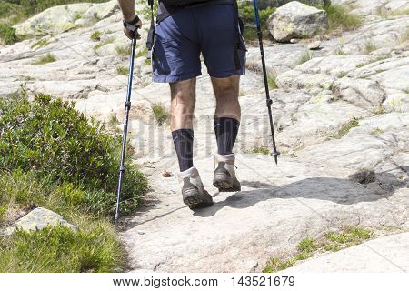 nature, people walking on a mountain trail