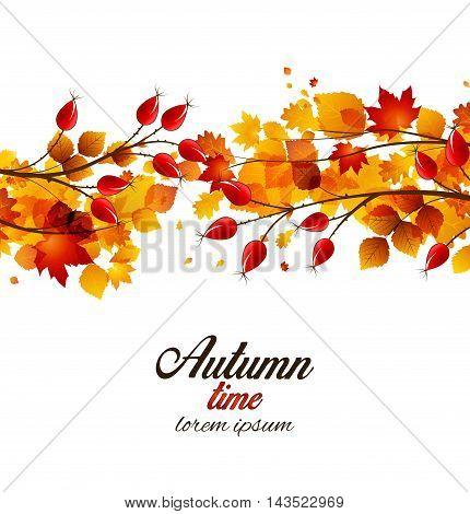 Vector illustration rose hip and leaf, autumn bush