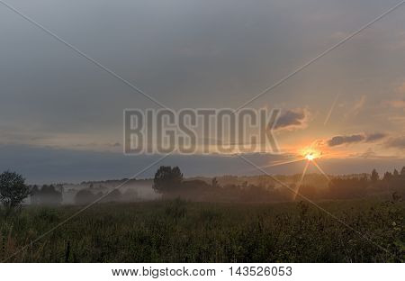 Foggy meadow with trees at sunset with cloudy sky.