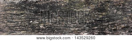 panorama of old wood texture with cracks barn board. big size. Copy space. Free space for text