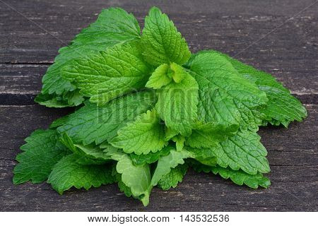 Fresh green young Lemon balm leaves on old oak teble side close up view