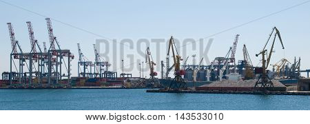 Panorama-sea cargo cranes in one of the southern ports