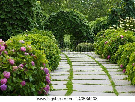 Green arch in botany garden