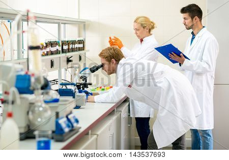 Teamwork of chemists working on analysis in lab