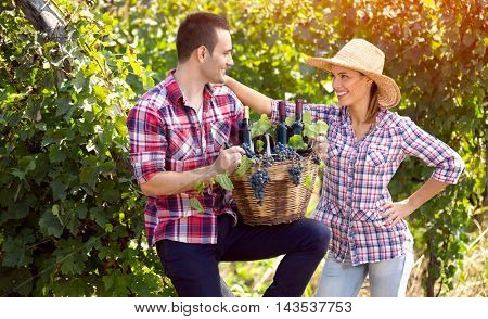 Cheerful young farmers couple in vineyard