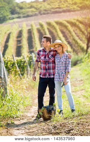 Love in vineyard, young romantic couple standing between rows of vines
