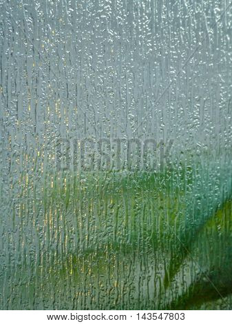 Blurred background with green leaves viewed through textured and translucent glass.