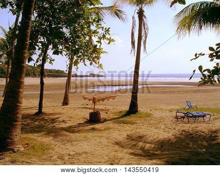 Nicaragua Montelimar beautiful beach with plenty of palm trees.
