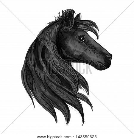 Black horse head symbol with purebred stallion. Horse racing badge, equestrian sporting competition or riding club symbol design