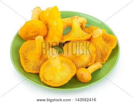 Yellow chanterelles on plate