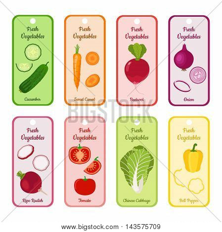 Set of vector blank with different vegetables. Cucumber, sweet carrot, beetroot, chinese cabbage, tomato, bell pepper, garden radish and onion. Illustration for village markets, supermarkets, gardens.