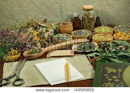 Set healing plants. Dried herbs for use in alternative medicine. Herbal cosmetics phytotherapy medicinal herbs. For preparation of infusions decoctions tinctures powders ointments tea.
