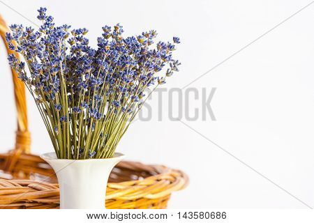 Bunch of dry wild mountain lavender flowers in vase on white background