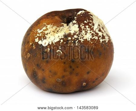 The rotten apple on a white background