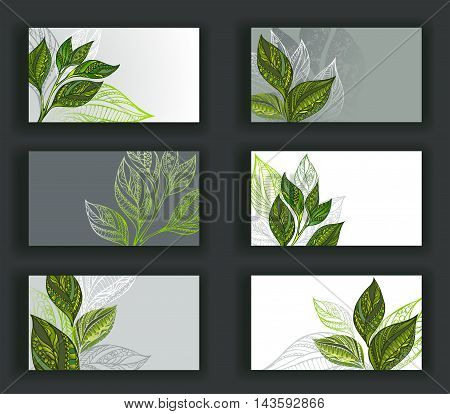 Set of business cards decorated patterned sprouts and leaves of tea. Tea design.