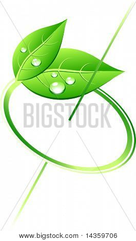 rotation green leaves. Vector illustration.