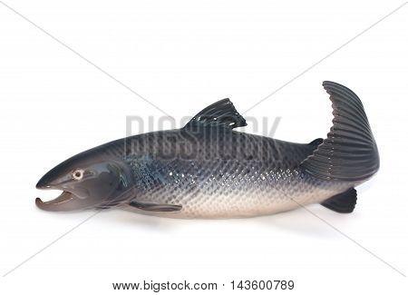 Salmon Figurine On White Background