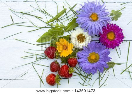 Four multi-colored chrysanthemums, yellow flower and red strawberries and green grass on a white table