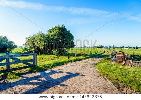 Narrow path between the fences of the meadows in the floodplain of a Dutch river. It's early in the morning on a sunny day in the summer season.