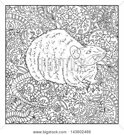 Hand drawn rat against zen floral pattern background for adult coloring book. Chinese new year astrological sign, horoscope and zodiac vector symbol, graphic illustration, vintage engraved style