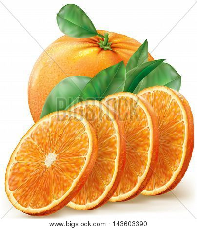Vector illustration oranges fruits with slices and leaves
