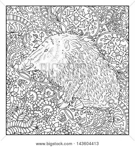 Hand drawn pig against zen floral pattern background for adult coloring book. Chinese new year astrological sign, horoscope and zodiac vector symbol, graphic illustration, vintage engraved style