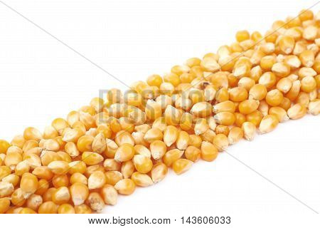 Line pile made of multiple corn kernels isolated over the white background