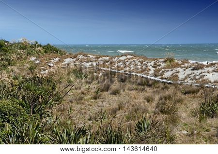Wooden Walkway By The Beach At Tauparikaka Marine Reserve, Haast, New Zealand