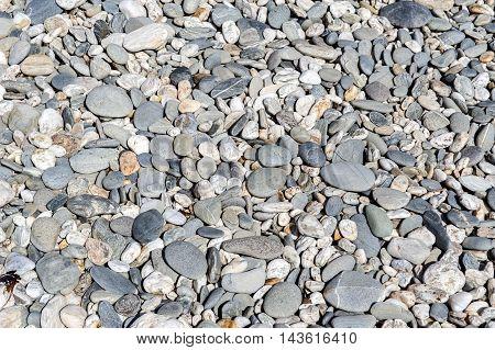 Pebble Background. Pebbly Beach At Tauparikaka Marine Reserve, Haast, New Zealand