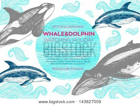 Nautical vector illustration drawn in ink. Whales dolphin and grampus on the waves. Sea design template. Whales dolphin and grampus watching holiday.