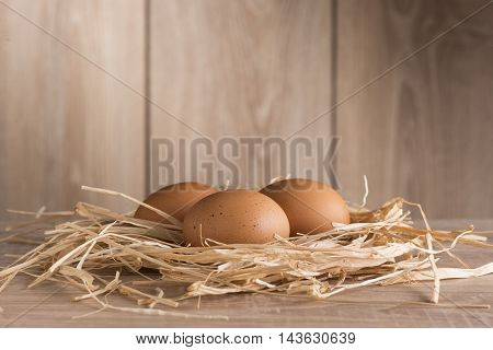 Chicken eggs in a nest of straw against the background of the fence in sunlight.