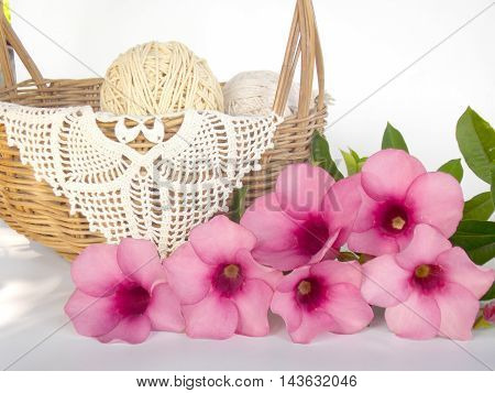 Beautiful pink flower with rattan basket on white background