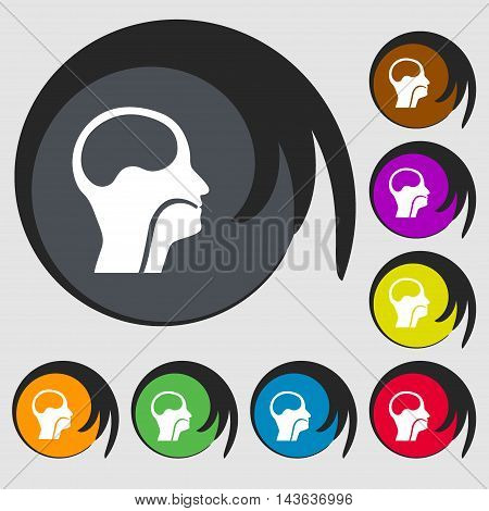 Larynx, Medical Doctors Otolaryngology Sign Icon. Symbols On Eight Colored Buttons. Vector