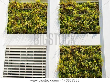 Photo of the Eco building. Vertical garden in architecture instead of window. Ecology