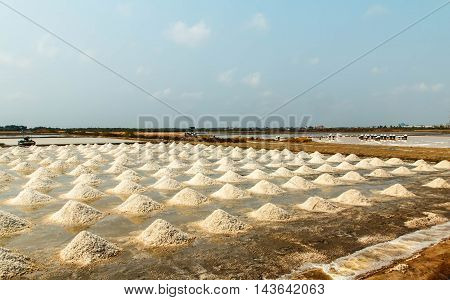 salt sea salt farm, Samut Songkhram, Thailand