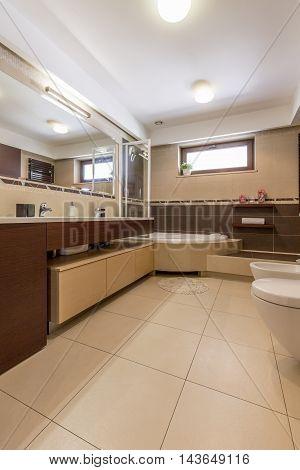 Roomy Bathroom Interior Practical On Busy Mornings