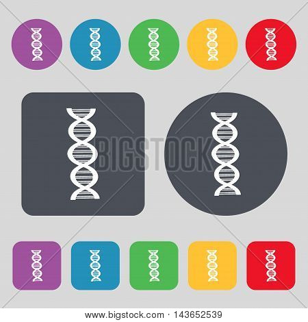 Dna Icon Sign. A Set Of 12 Colored Buttons. Flat Design. Vector