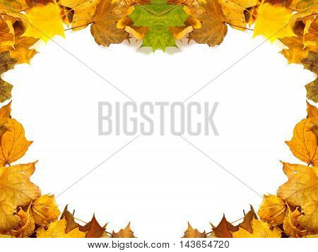 Autumn maple -leafs background with copy space