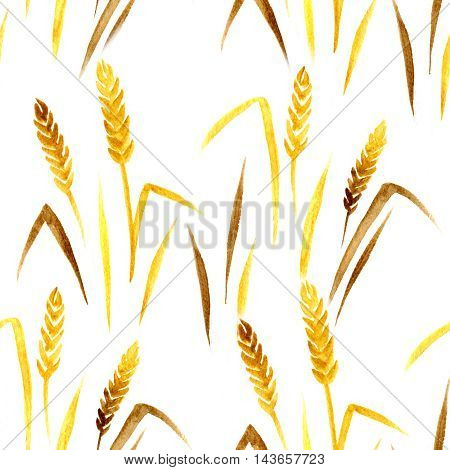 Seamless watercolor pattern with ear of wheat on the white background, aquarelle.