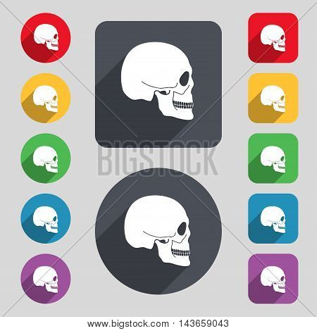Skull Icon Sign. A Set Of 12 Colored Buttons And A Long Shadow. Flat Design. Vector