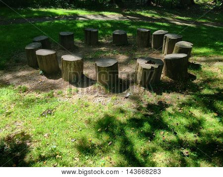 Log stumps in a circle in the woods surrounded by grass