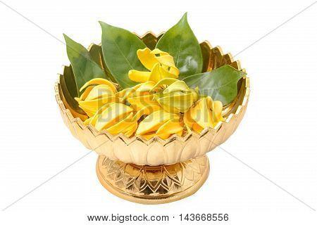 Ylang-Ylang flowerYellow fragrant flower on golden tray